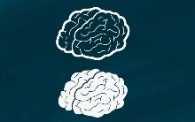 Что такое пассивный и активный словарный запас?