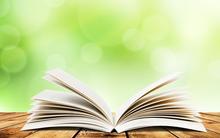 Как использовать правила словообразования при общении на английском?