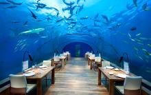 Самые удивительные рестораны мира