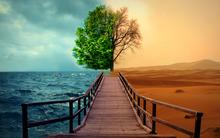 Позитивное и негативное мышление на уроках английского и в жизни