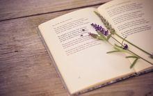 Рифмовки: классики русской литературы на английском