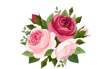 Цветы на английском: все, что нужно знать