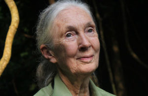 Jane Goodall's speech about peace